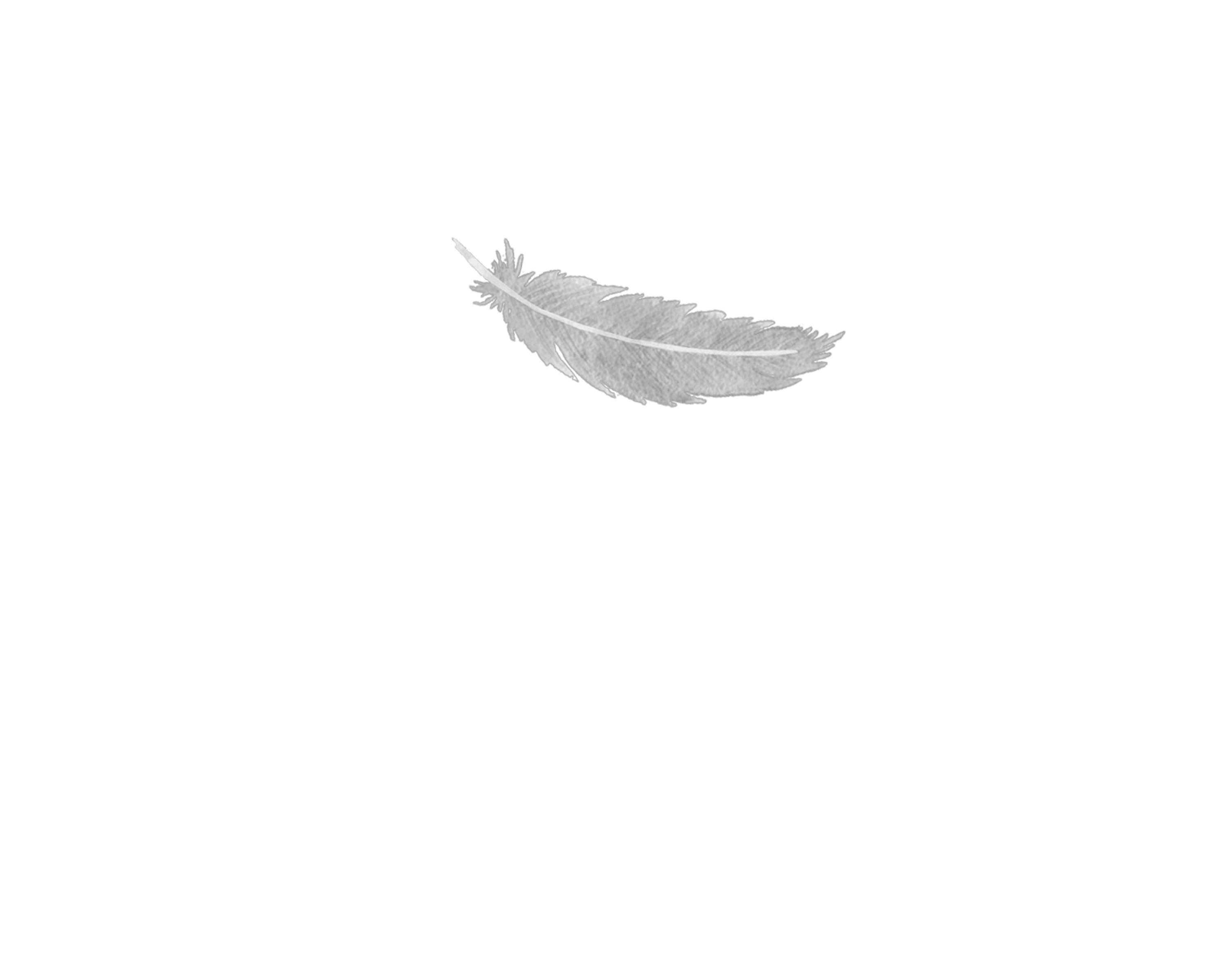 Glimpses Photography